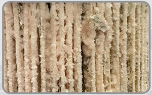 diesel fuel additive wax formed on filter